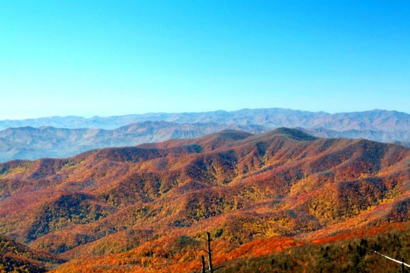 Great Smoky National Park exploding with October color